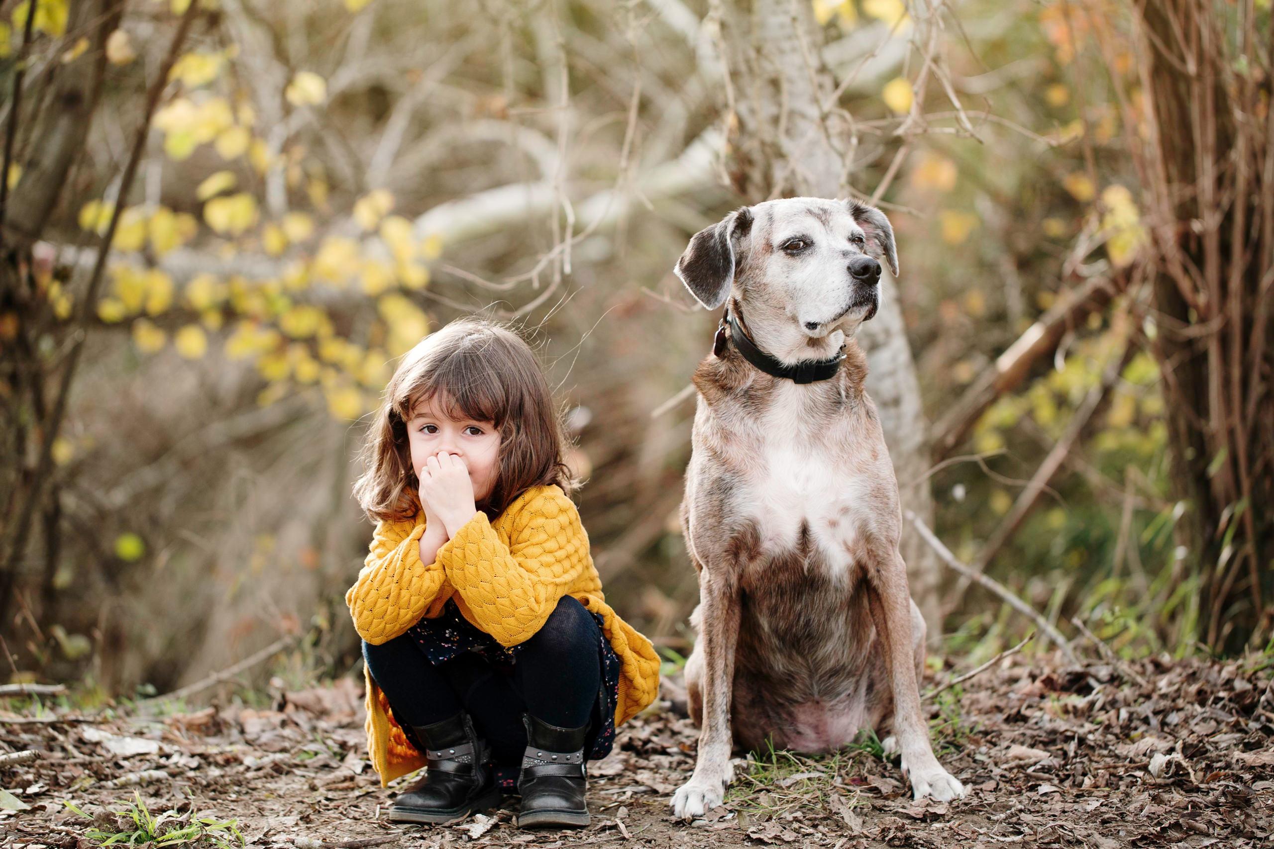Sesiones de Fotos Con Mascotas Barcelona